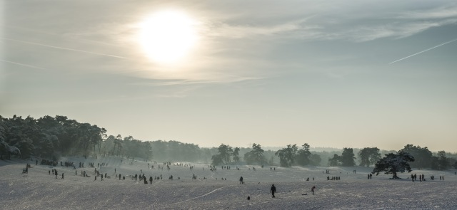 The Dunes of Soest