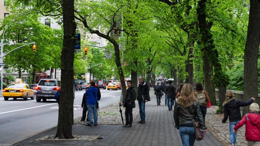 Sidewalk 5th Ave